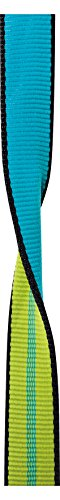 EDELRID - X-Tube 25mm Webbing, 100m, Oasis/Icemint by EDELRID