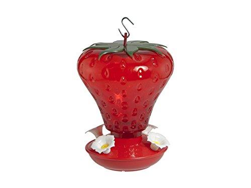 Audubon NA5540 991010 40 oz Cap Strawberry Hummingbird Feeder, Red by Audubon