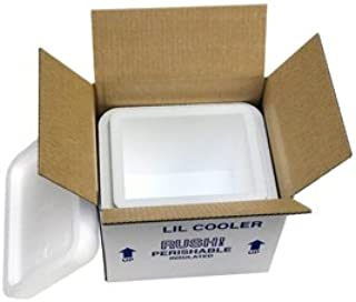 "product image for Lil' Foam Cooler Mailer, Insulated Shipper, 6 Quarts, 8"" x 6"" x 7"", 1.5"" Wall Thickness - (Case of 2)"