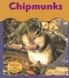 Chipmunks, Patricia Whitehouse, 1403443289