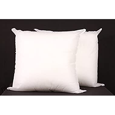 (Set of 2) 16 x16  Square Pillow Insert for Sham or Decorative pillow Made in USA
