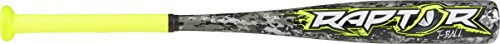 Rawlings 2019 Raptor Tball Youth Baseball Bat (-12), 24
