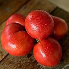 Anna Russian Tomato Seeds - 10+ Rare Non-GMO Organic Heirloom Vegetable Garden Seeds