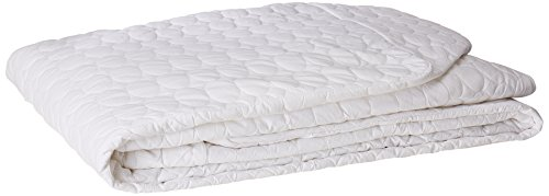 Remedy Bed Bug Dust Mite Cotton Mattress Protector, Queen