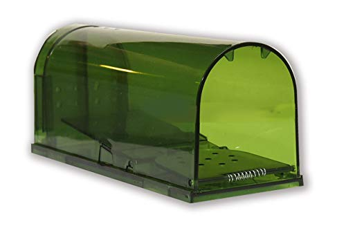 Harris Extra Large Humane Rodent Trap for Rats and Mice, Catch & Release with Added Air Holes
