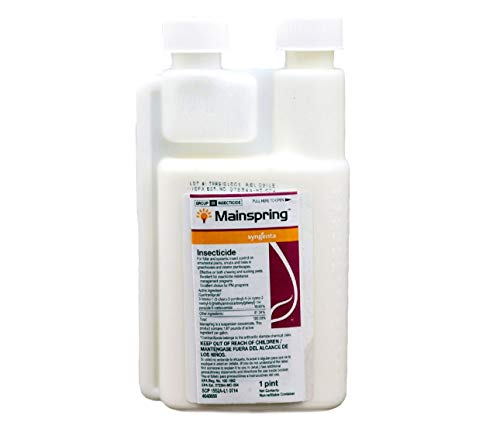 Syngenta Mainspring insecticide 1 PT