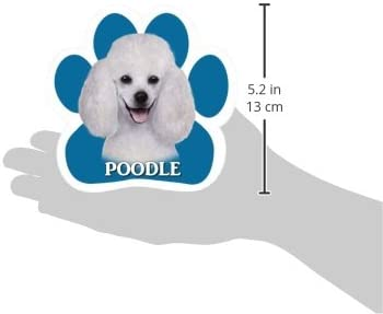 Sheltie Car Magnet With Unique Paw Shaped Design Measures 5.2 by 5.2 Inches Covered In UV Gloss For Weather Protection E/&S Imports 13125-37