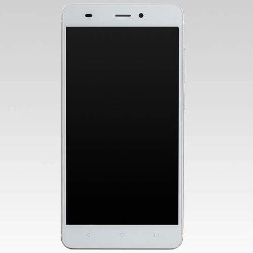 EP-172BZ-G(ゴ-ルド) EveryPhone BZシリ-ズ SIMフリ- LTE対応 32