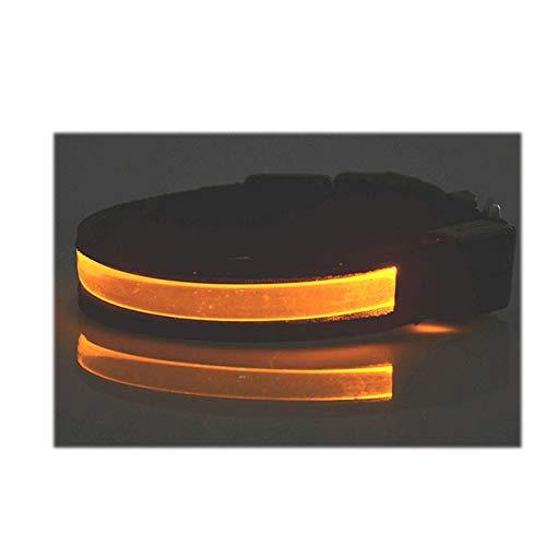 PEHTEN LED Lettering Pet Collar ID Tag Night Safety Flashing Dog Cat Collars Name Tel Necklace Collar Luminous Pet Supplies USB Orange L 40-54cm ()