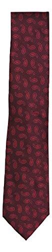Geoffrey Beene Print Tie - Geoffrey Beene Paisley Print Men's Neck Tie (Wine, One Size)