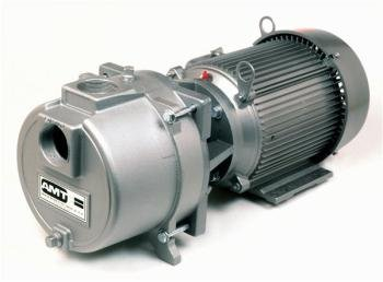 Ipt Sprinkler Booster Pump (AMT 2