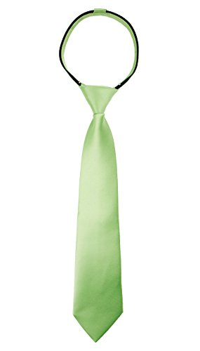 Spring Notion Boys' Satin Zipper Neck Tie Large Sage
