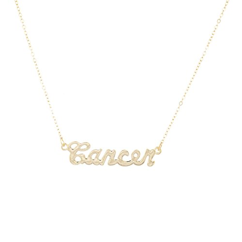 Lux Accessories Horoscope Zodiac Necklace