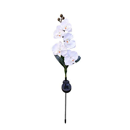 (Nesee Solar Light Flower Lily Stakes, Outdoor LED Garden Flowers for Night Lighting, Solar Path Walkway, Lawn, Garden, Pond, Patio, Gravestones, Special Occasions, etc)