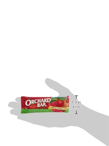 Orchard Bars Fruit and Nut Bar, Strawberry/Raspberry/Walnut, 1.4 Ounce (Pack of 12) by Orchard Bars (Image #4)'
