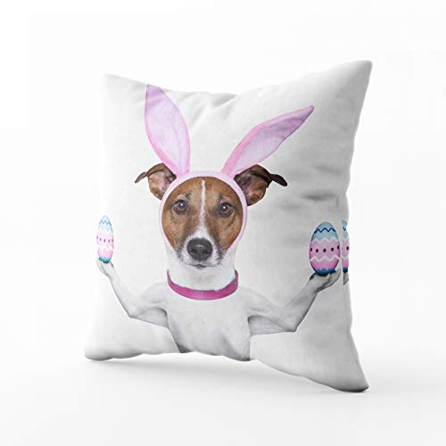 HerysTa Easter Home Decorative Cotton Pillowcase 16X16inch Invisible Zipper Cushion Cases Dog Bunny Ears Balancing Two Easter Eggs Square Sofa Bed D¨¦cor ()