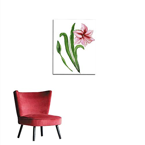 - Photographic Wallpaper Beautiful spring floral illustration Pink amaryllis (flower on a stem with leaves and closed bud) isolated on white background Watercolor painting Hand painted imamural 16