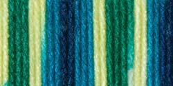 Bulk Buy: Bernat Super Value Ombre Yarn (3-Pack) Whirlpool 164128-28134 by Bernat Bulk Buy B00K13KV1Y