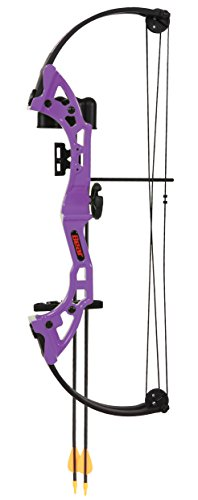 Bear Archery Brave Youth Bow   Purple
