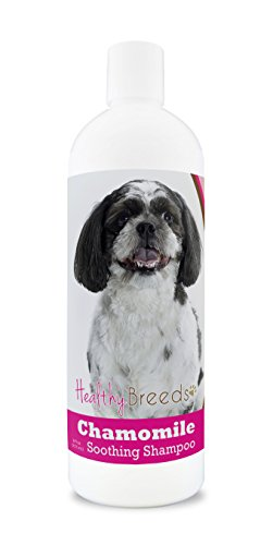 Breeds Dog Poo (Healthy Breeds Chamomile Dog Shampoo & Conditioner with Oatmeal & Aloe for Shih-Poo - OVER 200 BREEDS - 8 oz - Gentle for Dry Itchy Skin - Safe with Flea and Tick Topicals)