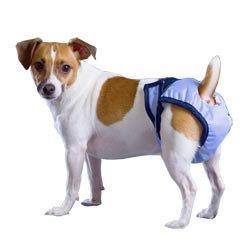 PadVital waschbare Hundewindel für Rüden und Hündinnen - Größe M