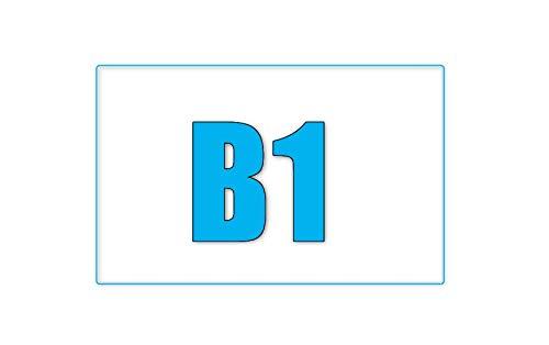 (マーシェル) Marshel 天津飯タイプ 小籠包型 防寒 インテリア B07KPQVN6T