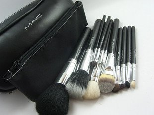 Amazon.com: MAC Cosmetics Professional Brush Set 12 Piece with Case: Beauty