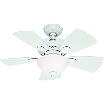 Hunter Fan Company 52089 Watson 34-Inch Snow White Ceiling Fan with Five Snow White/Bleached Oak Blades and a Light Kit