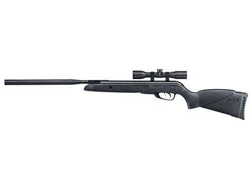 Gamo Wildcat Whisper Air Rifle .22 Caliber 975 FPS - Black 611006785554 (Gamo Whisper Silent Cat 22 Air Rifle)