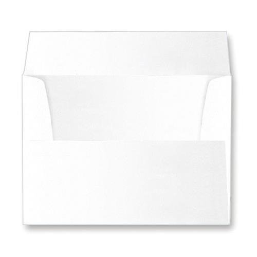 Collectors Gallery Mailing Envelope for all Polaroid Easel Frames, Polaroid Portrait Folders & Fujifilm Instax Easel Frames, Color: White. 25 Pack
