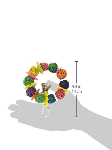 Product image of Super Bird Creations Daisy Ring Toy for Birds