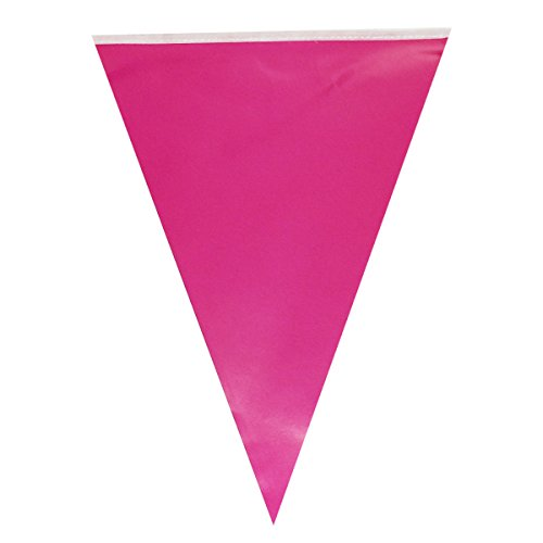 Allydrew Triangle Pennant Banner Party Decorations for Birthday Parties, Baby Showers, Nursery Decor, Picnics, and Bake Sales, Hot Pink