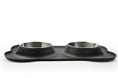 BONVE PET Bowl - Stainless Steel Dog Food Water Bowl with No Spill Silicone Mat Best Dog Bowls for Feeding Dogs Cats Puppies, 29.8oz (Set of 2)