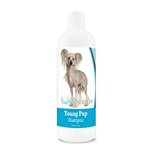 Healthy Breeds Chinese Crested Young Pup Shampoo 8 oz