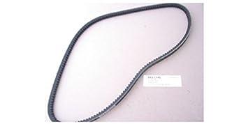 ashuki V13 – 1145 correa dentada