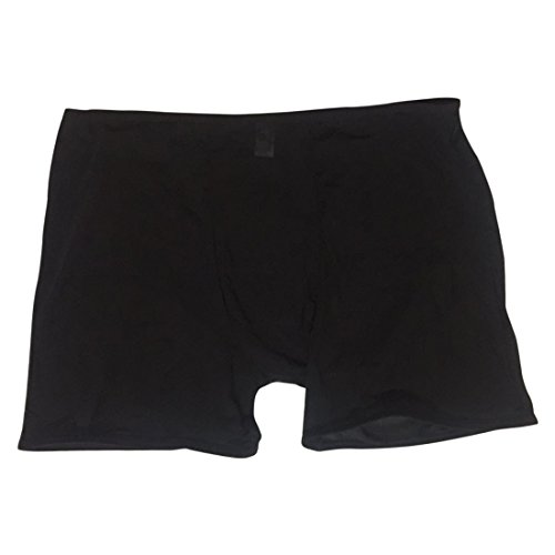 Men's Breathable See Through Boxers Briefs Mesh Underwear Free Size (One Size, (Black Mesh Brief)