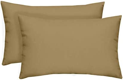 Set of 2 Indoor / Outdoor Decorative Lumbar / Rectangle Pillow