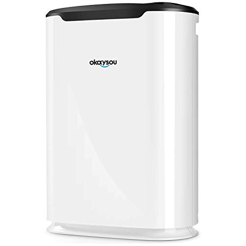 Okaysou AirMax8L Air Purifiers with Ultra-Duo 2 Filters, Medical Grade H13 HEPA for Home Pets Smokers, Remove 99.97% Smoke Dust Pollen VOCs for Large Room, Bedroom, Up to 800 Sq. Ft
