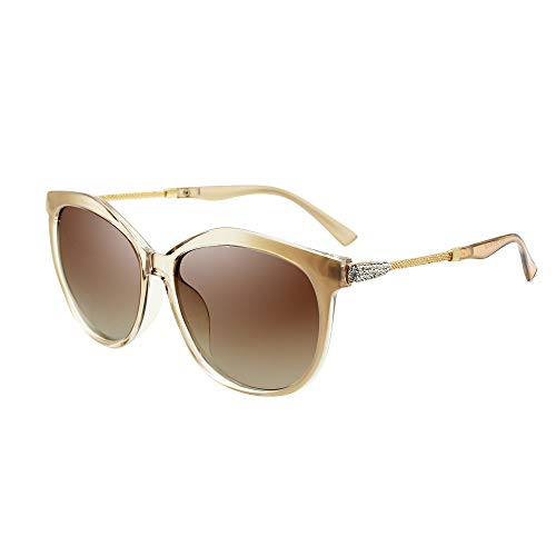 (VeBrellen Women's Shades Polarized Sunglasses for Women UV Protection Eyewear Transparent Frame (Champagne Frame Brown Lens))