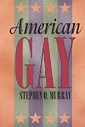 American Gay (Worlds of Desire: The Chicago Series on Sexuality, Gender, & Culture)