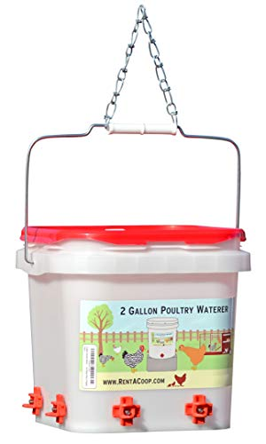 2 Gallon Chicken Waterer - Horizontal Nipple Setup (4 Nipple Corner)