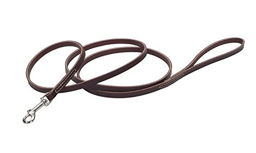 - Coastal Pet Products DCP2064 1/2-Inch by 6-Feet Leather Circle T Latigo Dog Leash with Nickel Plated Snaps