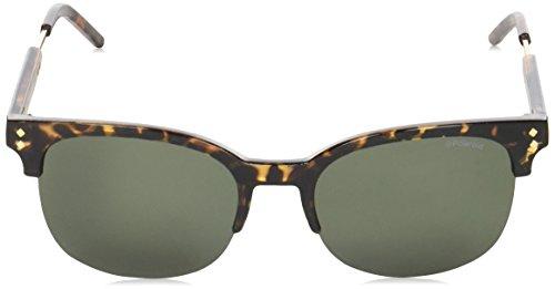 Pz S PLD Gold Havana Polaroid Green Sonnenbrille 2031 Dorado qZtxqwB68