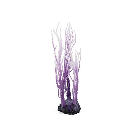 De Tanque Plástico De Blanco Decor Acuario Aquascape sourcing Mar Plantas map De Acuario De morado Coral Ornamento 4PxCwn0Iq