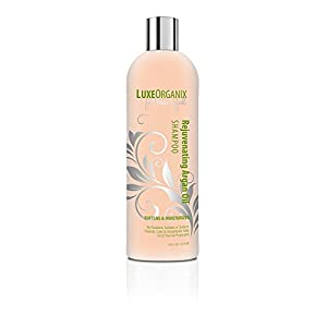 Moroccan Argan Oil Shampoo, SLS Sulfate Free + Safe for Color Treated, Keratin Treated Hair; Best for Damaged, Dry, Curly or Frizzy Hair - Thickening for Fine/Thin Hair (Made in USA) (16 oz)