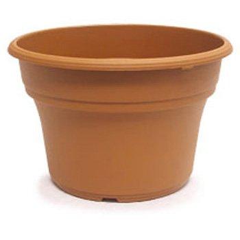 8inch terra cotta pot - 2