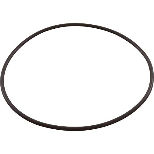 Pentair Pinnacle Pump Seal Bracket O-Ring 355619