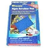 "Penn Plax WZP3 Wizard Algae Scrubber Pad - For Glass Tanks - 6"" x 9"""