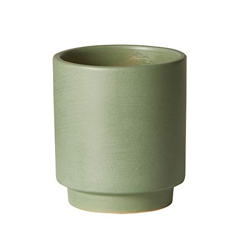 The Sill Ceramic Planter | High Line Indoor Pots for Plants | Earthenware Cylinder Planter for Small Plants and Flowers | Mini, 5 x 4 inches, Sage