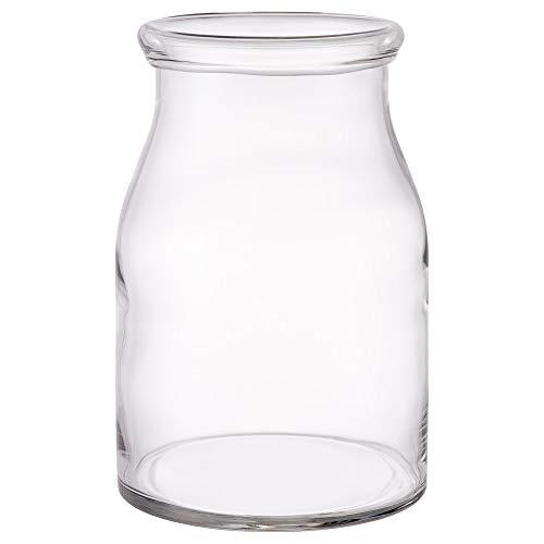 IKEA BEGÄRLIG Vase, Clear Glass (Pack of 1, 11 ½